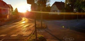sunnyroad